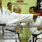 AGKK – Australian GoJu Kai Karate - Goju Ryu Karate Techniques