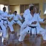 AGKK – Australian GoJu Kai Karate - Karate Class for Adults