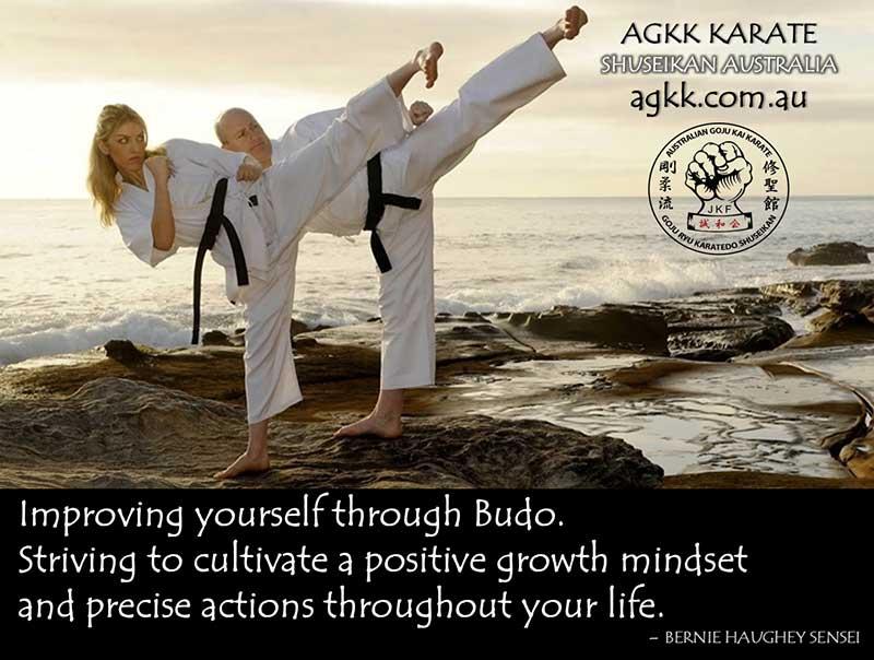 Improving yourself through Budo
