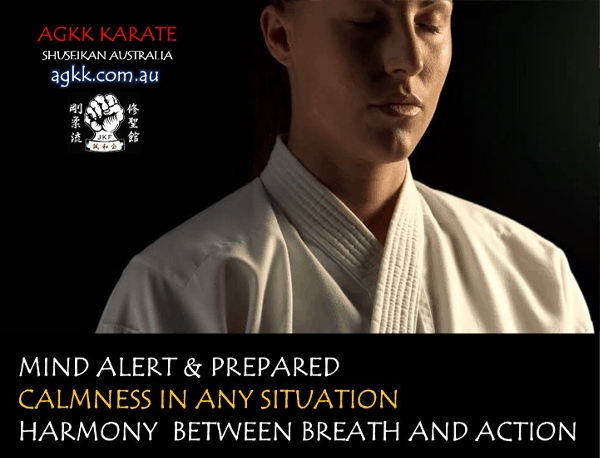 Learn Martial Arts and be Mind Alert & Prepared