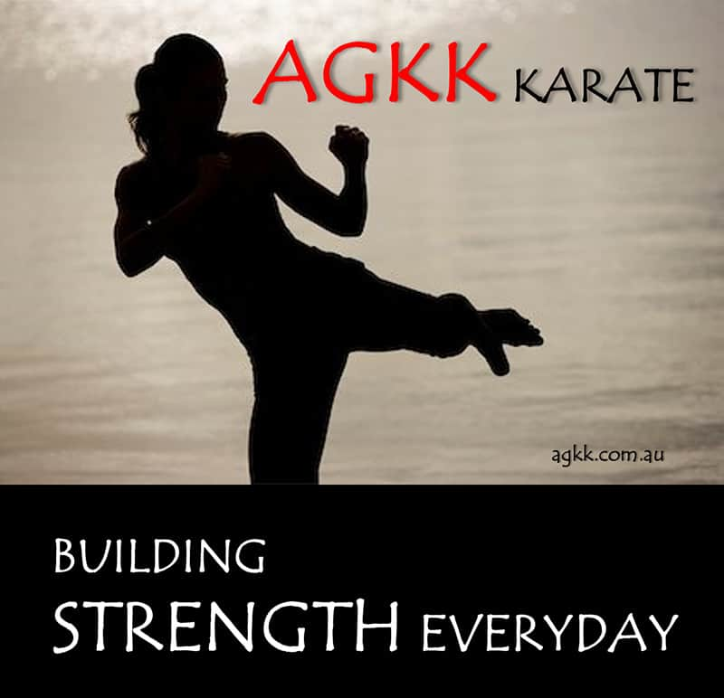 AGKK Karate Classes for Adults - Building Strength Everyday