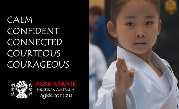 AGKK Martial Arts for Kids