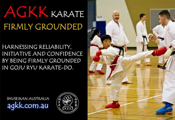 Firmly grounded martial arts programs