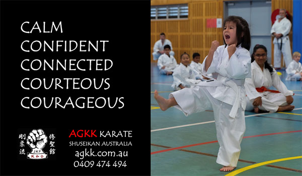 Karate and Martial Arts classes, for Kids Adults & Families