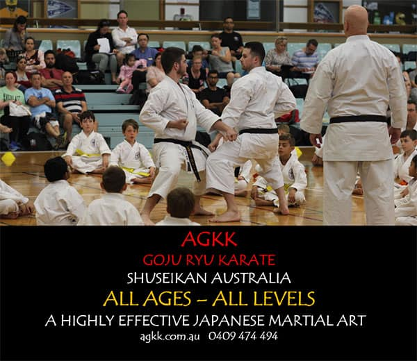 AGKK - Highly effective Japanese Martial Arts